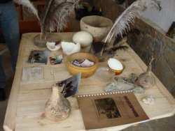 Ostrich souvenirs mini shop as the ostrich farm southern Bulgaria